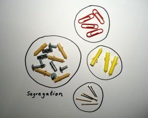 Segregation ©Inklusionsfakten